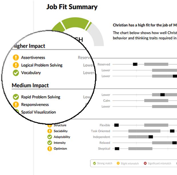 JobFit Report Sample